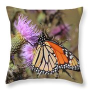 Monarch On Thistle II Throw Pillow