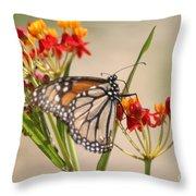 Monarch Portrait Throw Pillow