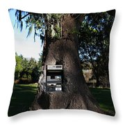 Money Tree . 7d9817 Throw Pillow