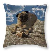 Mongo With Texture Throw Pillow