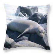 Monk Seal Throw Pillow