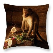 Monkey And Coconut Throw Pillow