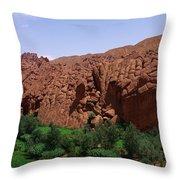 Monkey Fingers Mountain Throw Pillow