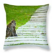 Monkey Mother With Baby Resting On A Walkway Throw Pillow