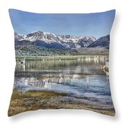 Mono Lake Sierra Throw Pillow
