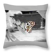 Monochromatic Butterfly Throw Pillow