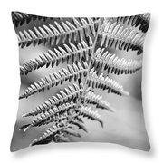 Monochrome Fern Frond Throw Pillow