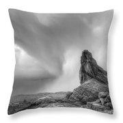 Monochrome Landscape Project 5 Throw Pillow
