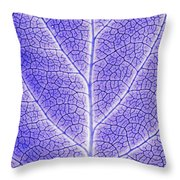 Monotone Close Up Of Leaf Throw Pillow by Sean White