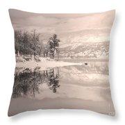 Monotone Winter Throw Pillow