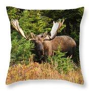 Monster In The Hemlocks Throw Pillow