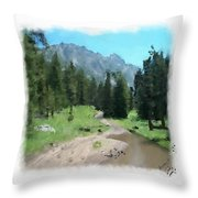 Montana Mudhole Throw Pillow