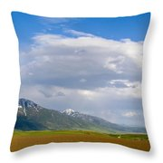 Montana Ploughed Earth Field Throw Pillow