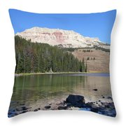 Montana100 0883 Throw Pillow