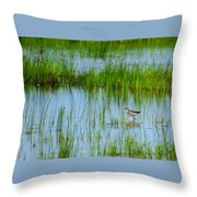 Montezuma National Wildlife Refuge Throw Pillow