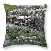 Montreat In Spring Throw Pillow