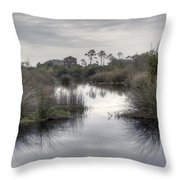 Moody Marsh Throw Pillow