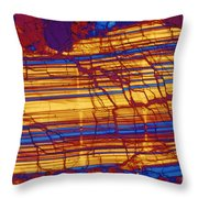 Moon Rock, Transmitted Light Micrograph Throw Pillow by Michael W. Davidson