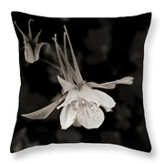 Moonlight Columbine Throw Pillow
