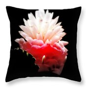 Moonlight Glow Throw Pillow