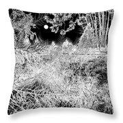 Moonlit Frost Throw Pillow