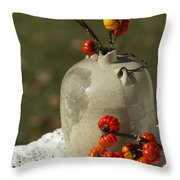 Moonshine Jug And Pumpkin On A Stick Throw Pillow