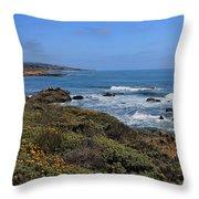 Moonstone Beach Throw Pillow by Heidi Smith