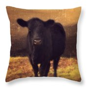 Moooo Cow  Throw Pillow