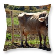 Moos Throw Pillow