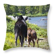 Moose Ends Baxter State Park Maine Throw Pillow