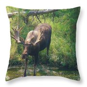 Moose Is Loose Throw Pillow