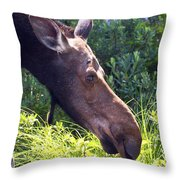 Moose Profile Throw Pillow