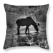 Moose Silhouette Throw Pillow