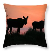 Moose Silhouetted At Sunset Throw Pillow