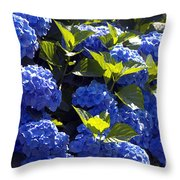 Mophead Hydrangeas Dry Brushed Throw Pillow
