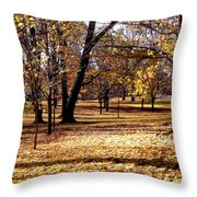 More Fall Trees Throw Pillow