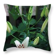 More On The Way Throw Pillow