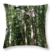 More Platte Throw Pillow