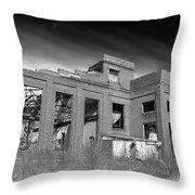 More Urban Decay  70797 Throw Pillow