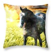 Morisco At Sunset Throw Pillow