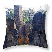 Morning At Bulow Plantation Throw Pillow