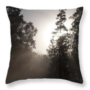 Morning At Valley Forge Throw Pillow
