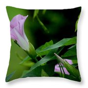 Morning Awakening Throw Pillow