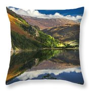morning by Llyn Gwynant Throw Pillow