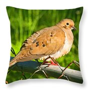 Morning Dove II Photoart Throw Pillow