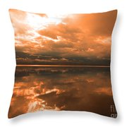 Morning Expressions Throw Pillow
