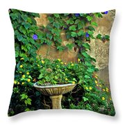 Morning Glory Garden In Provence Throw Pillow