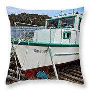 Morning Glory Waiting For Spring Throw Pillow