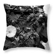Morning Glorys On A Fence Throw Pillow