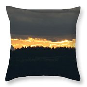 Morning Gold Throw Pillow